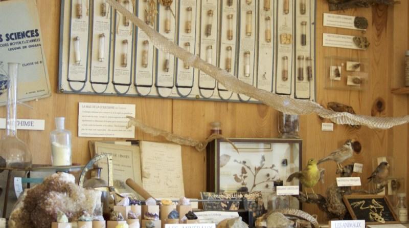 Cabinet de curiosté-musée de l'école