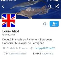 Profil Louis Aliot aux couleurs BREXIT