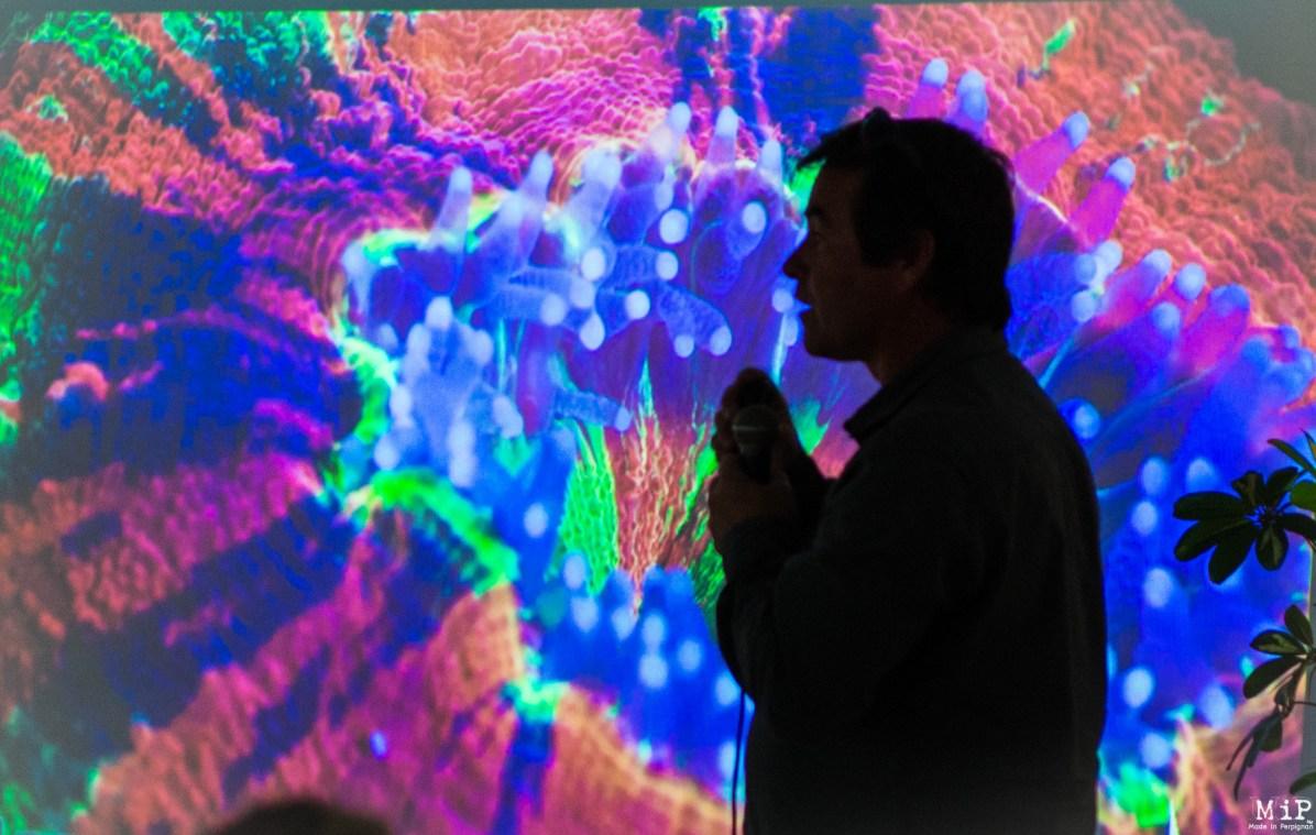 Image d'archives - Serge Planes présente les récifs coralliens
