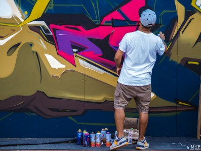 Meeting of Styles 2017 -6240230
