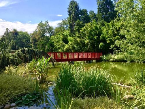 Jardin des plantes Saint Cyp' 1- Credit photo KikiMag