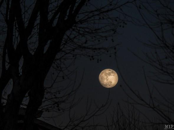 Lune bleue Perpignan-1300054