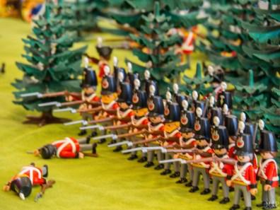 Le Festival du Playmobil by Le cercle des amis de l'aviron de Perpignan-3100054