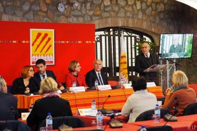 Castelnou - Assemblée déplacée du Conseil Départemental - Salle ds tilleuls