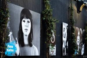 Festival Confrontation Institut Jean Vigo Perpignan Avril 2019