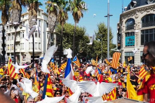 Les Catalans à Perpignan-3