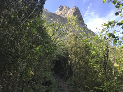 sentier-pech-de-bugarach-depuis-le-col-de-linas