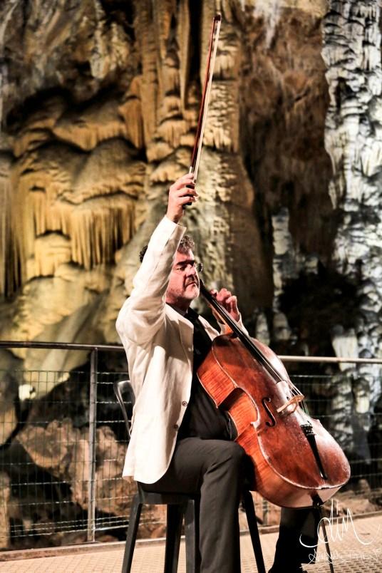 Patrick Demenga - Festival Pau Casals - Credit photo Jimmy Phan