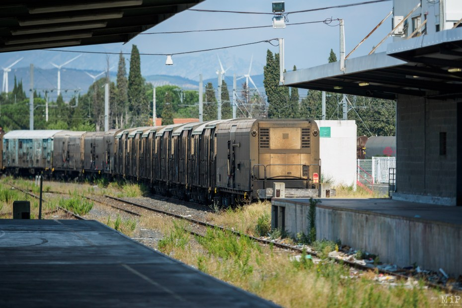 Images d'archives - Train Primeurs août 2019