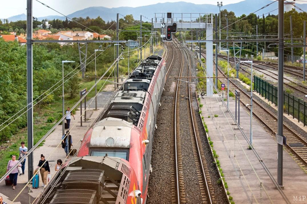 Train - Gare de Rivesaltes