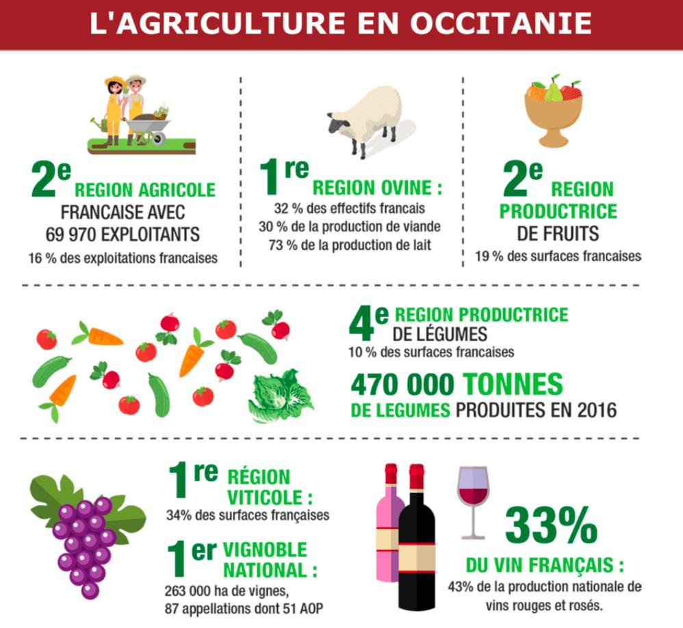 Infographie l'agriculture en Occitanie