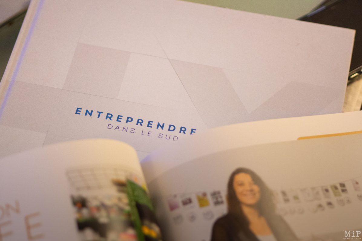 Livre Entreprendre dans le Sud avec la Banque Populaire
