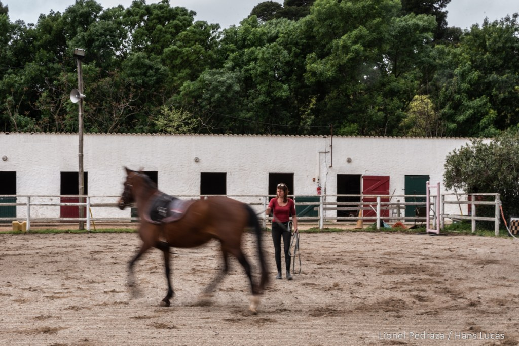 Villeneuve de la Raho, April 17, 2020, equestrian center. Close to the public since March 17, 2020 following the containment established during the COVID19 pandemic. Lucie runs alongside a horse. Villeneuve de la raho, 17 avril 2020, centre equestre. Fermé au public depuis le 17 mars 2020 suite aux confinement instaure lors de la pandemie du COVID19. Lucie longe un cheval. Le maintien de la forme physique de l animal est imperative pour sa sante et pour une reprise des cours equins a la fin du confinement.