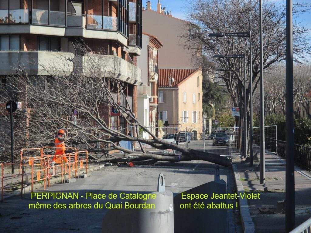 Perpignan Quai Bourdan 13 janvier 2021 Photo © FRENE66