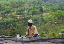 Duizend heuvels… en koffie!