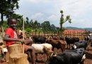 Afrikaans kenniscentrum voor duurzame koeling opent haar deuren