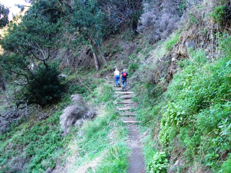 Eira do Serrado to Curral das Freiras Walk in Madeira (3)