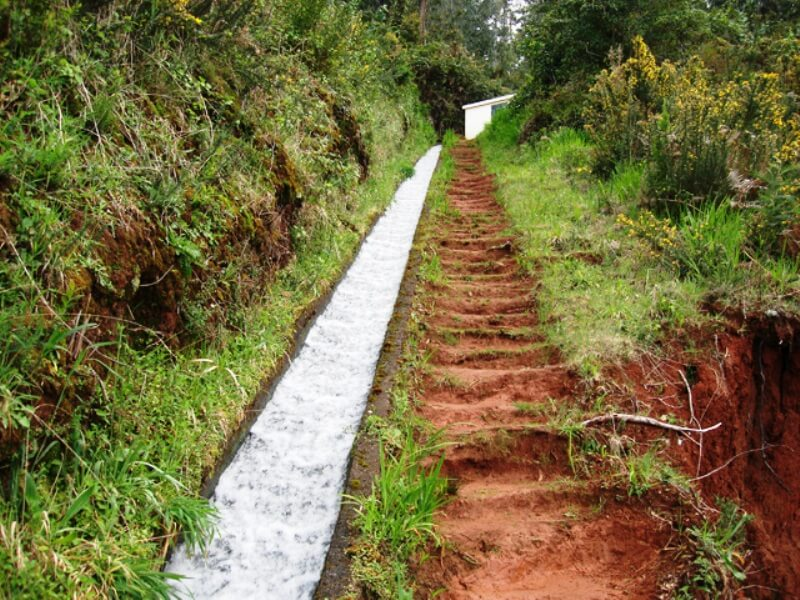 King's Levada Walk (Medicinal herbs) and Northeast views in Madeira (1)