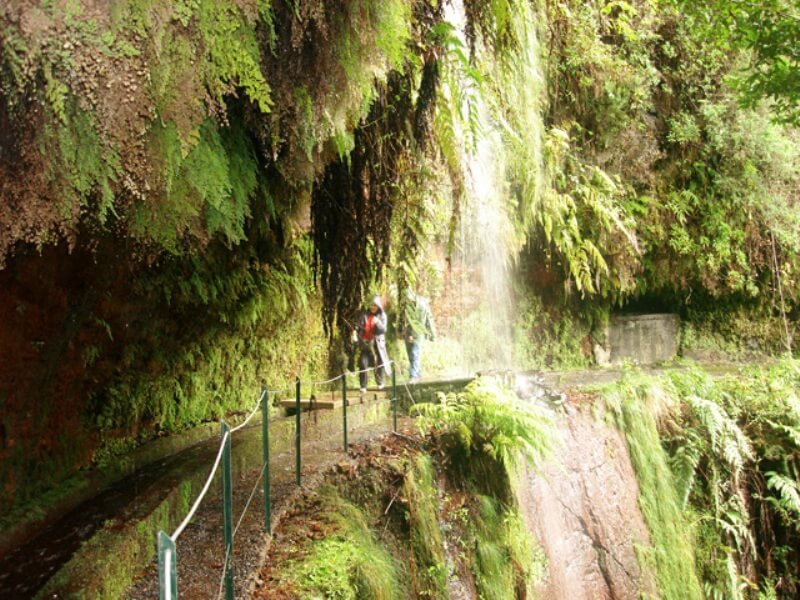 King's Levada Walk (Medicinal herbs) and Northeast views in Madeira (7)