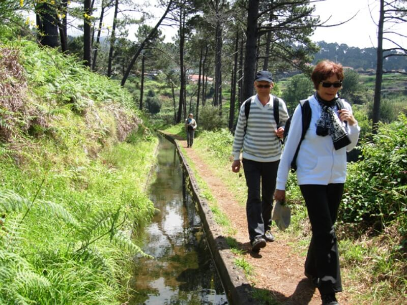 Prazeres to Ponta do Pargo Levada Walk in Madeira (8)