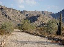 Verrado Trails