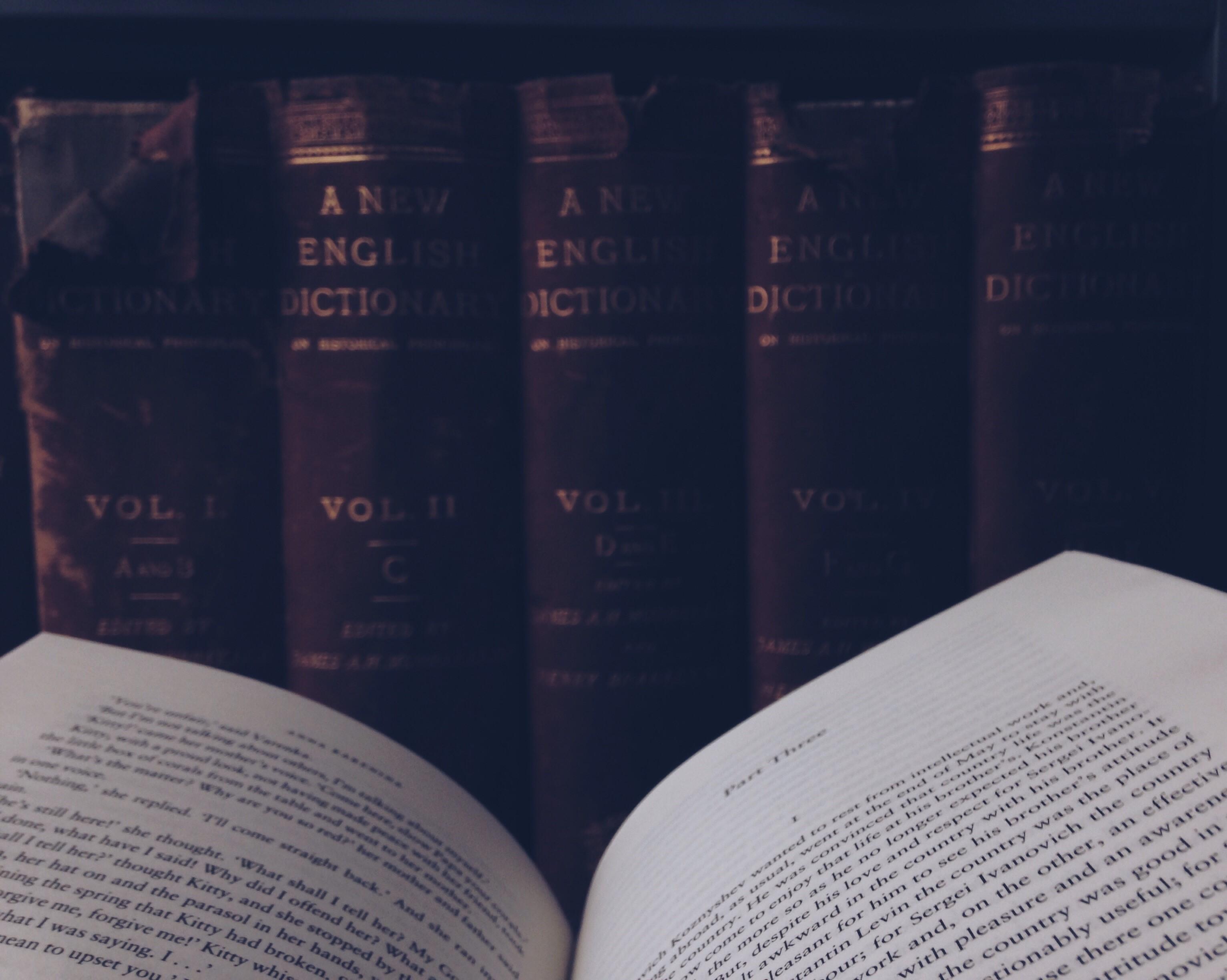 Reading Anna Karenina leo tolstoy old books