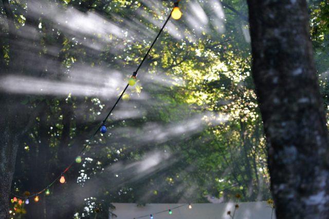 Vue sur le parc durant le festival