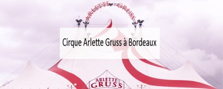 Cirque Arlette Gruss - Made me Happy - Blog Bordeaux Lifestyle (cover)