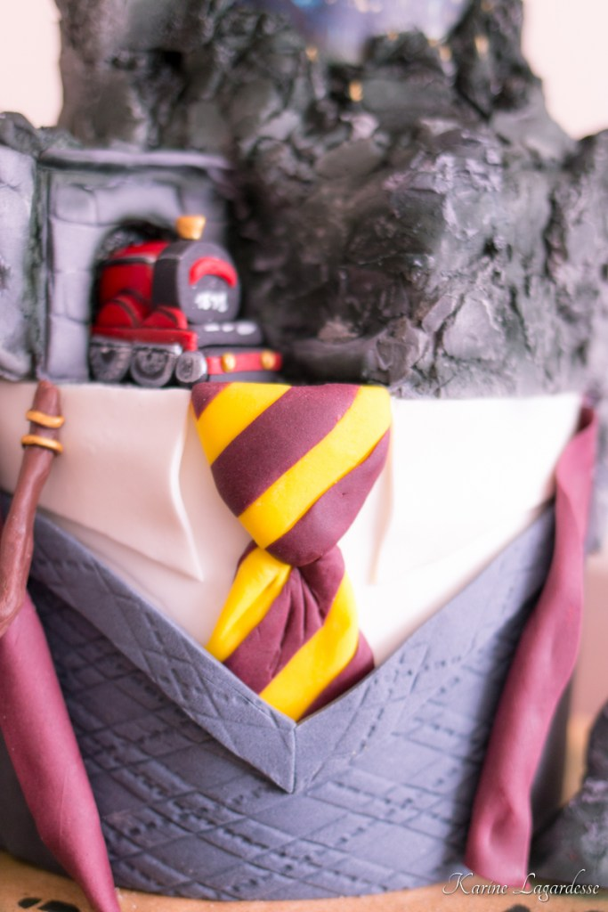 gateau-anniversaire-harry-potter-cake-design-bordeaux-11