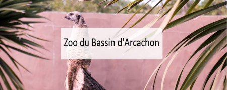 Zoo du bassin d'arcachon - Made me Happy - Blog Bordeaux Lifestyle (cover)