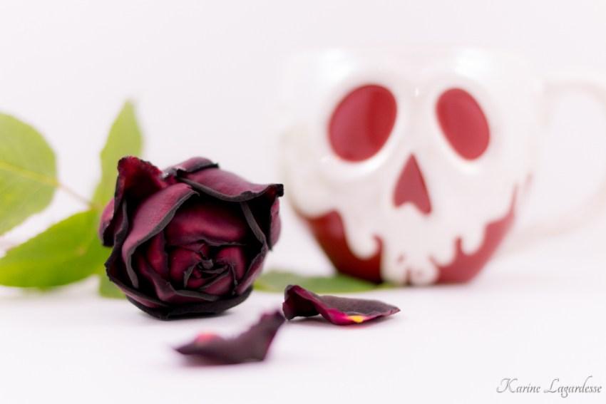 mug-pomme-empoisonnee-made-me-happy-blog-bordeaux-2