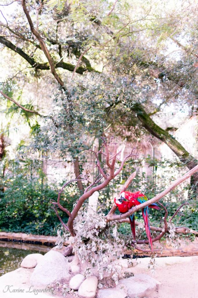 zoo-palmyre-made-me-happy-blog-bordeaux-14