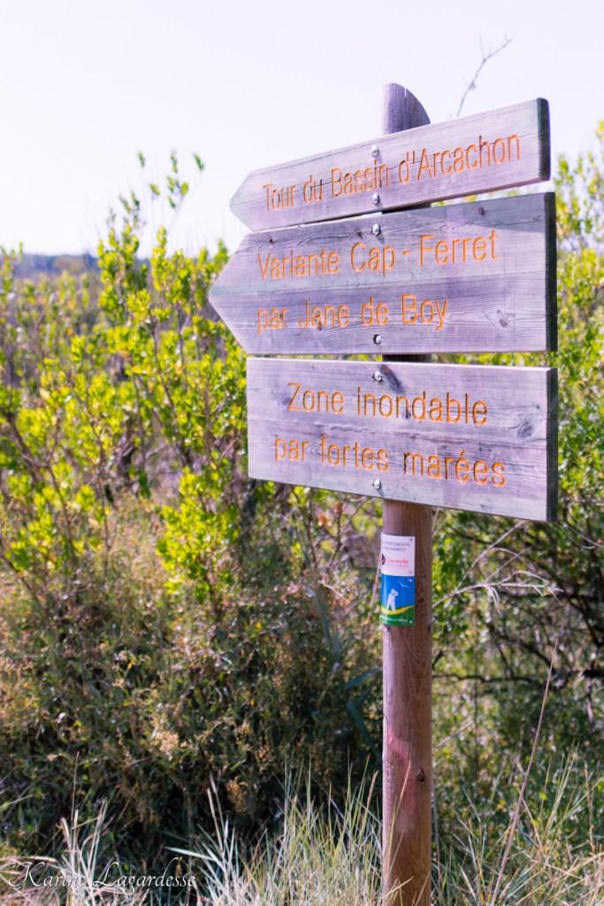 Les prés salés à Arès - Blog bassin d'arcachon Made Me Happy