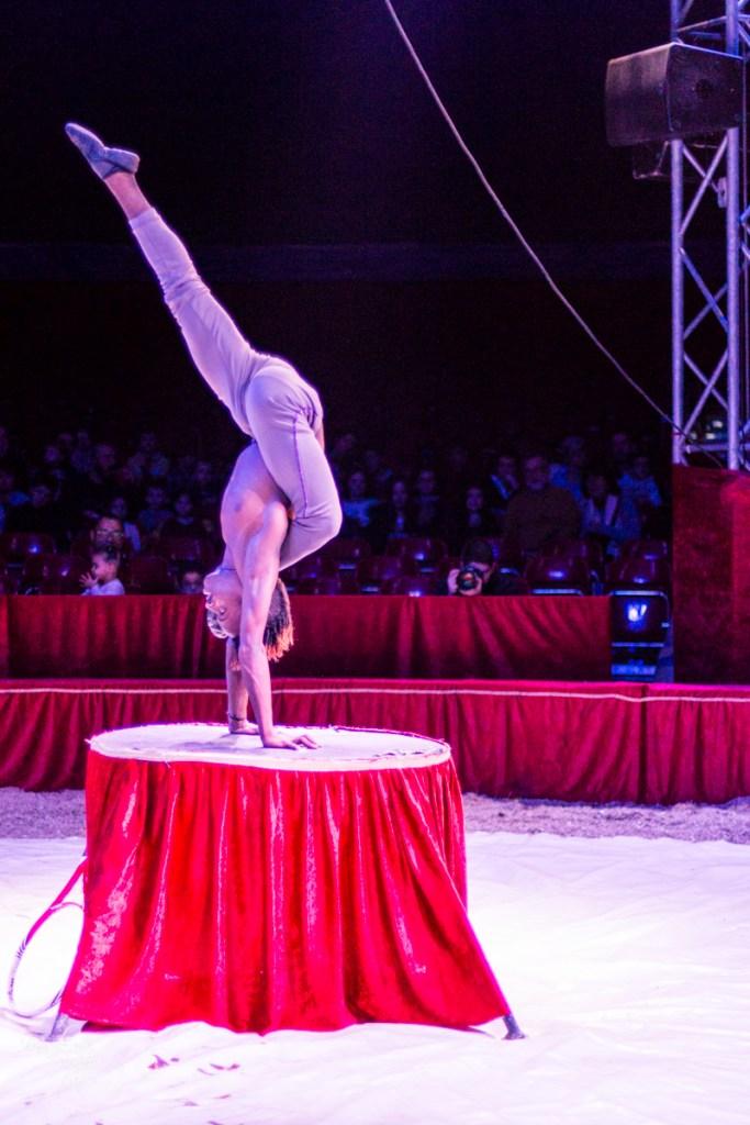 Grand Cirque de Noël - Blog lifestyle Bordeaux-5