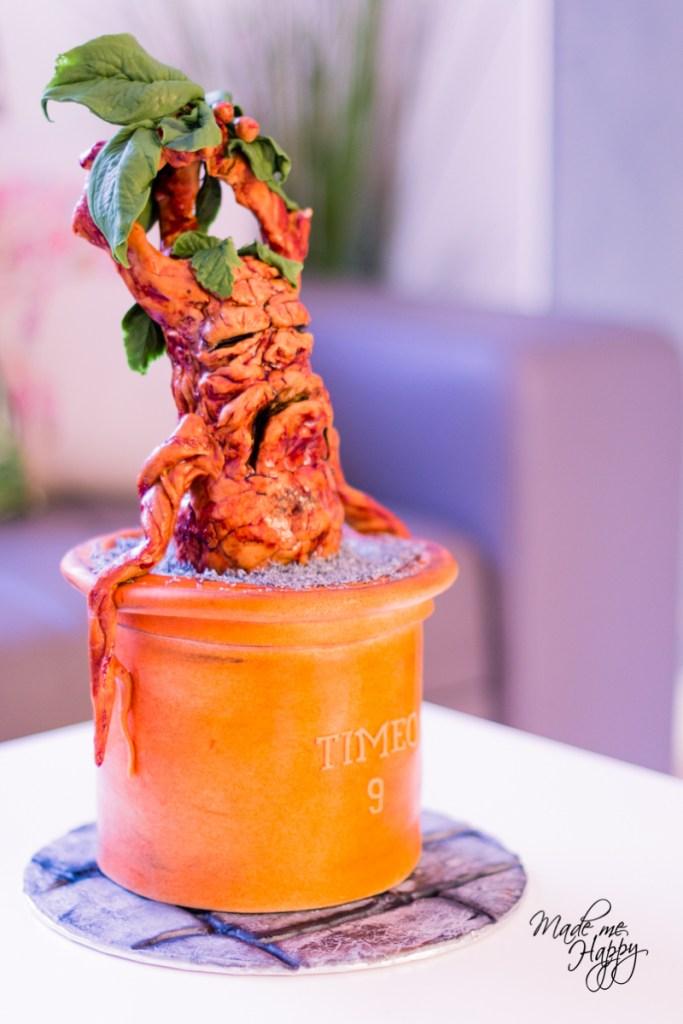 Gâteau Harry Potter - Cake design - blog lifestyle bordeaux