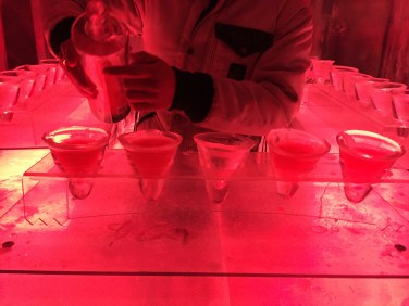 Ice Kube Bar Paris 6