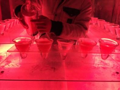 Ice Kube Bar Paris 6