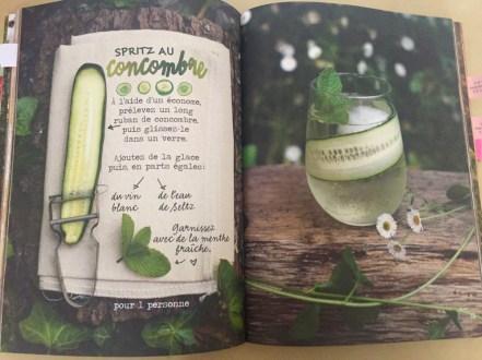 Livres recettes veggie - 5