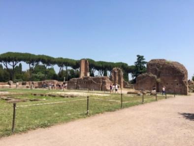Palatin Rome - 7