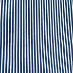 rayure bleu et blanc