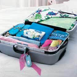 esskit-suitcase-july06