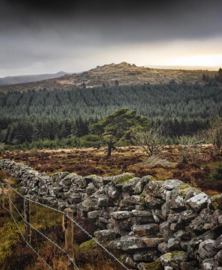 Parco Nazionale del Dartmoor