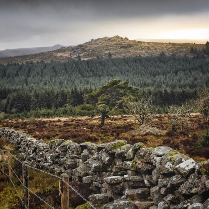 Viaggio in Cornovaglia: Dartmoor
