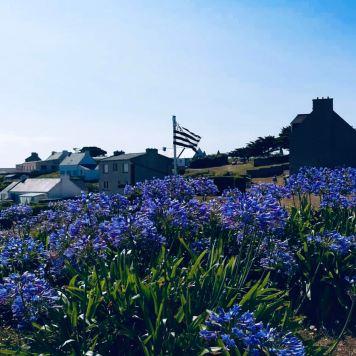 Isole bretoni: ÎLE DE MOLÉNE