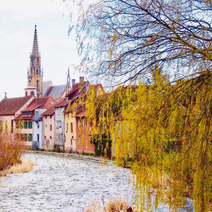 Strada dei vini Alsazia: Thann