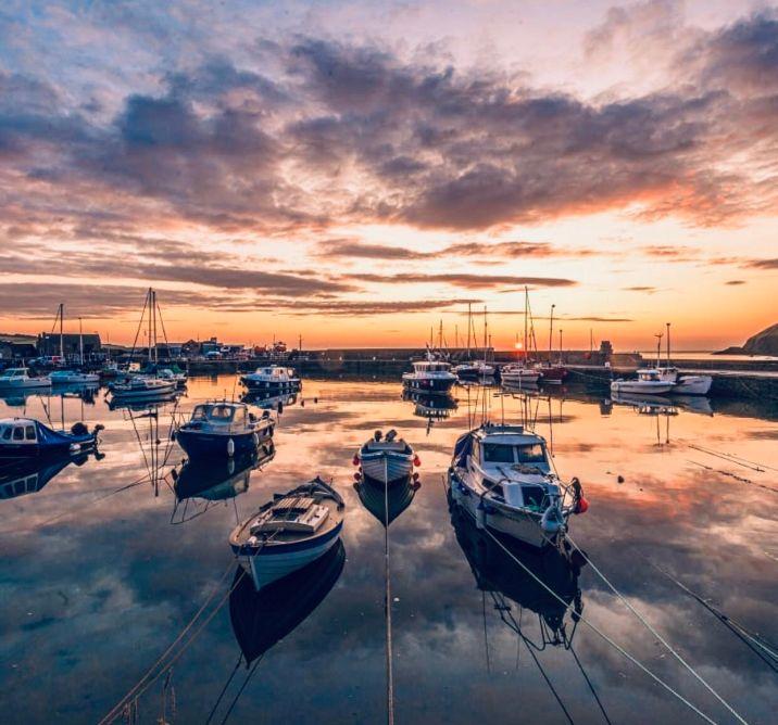 Stonehaven Harbour lo spettacolo del porto al tramonto