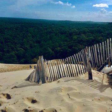 Dune du Pilat vista pineta