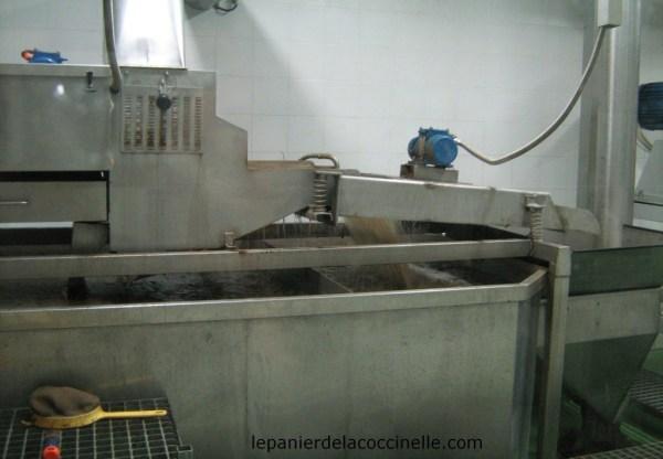 Moulin-de-Villevieille-lavage-olives