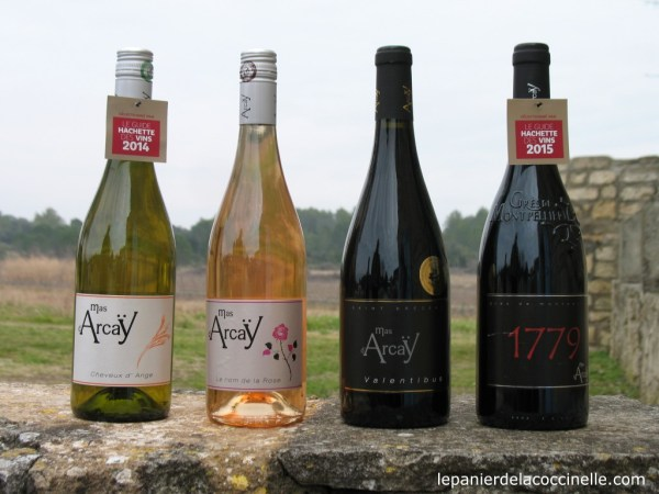 Mas d'Arcaÿ-vins