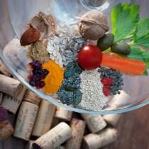 instant-gourmand-vegetarien-ecole-des-vins-du-languedoc